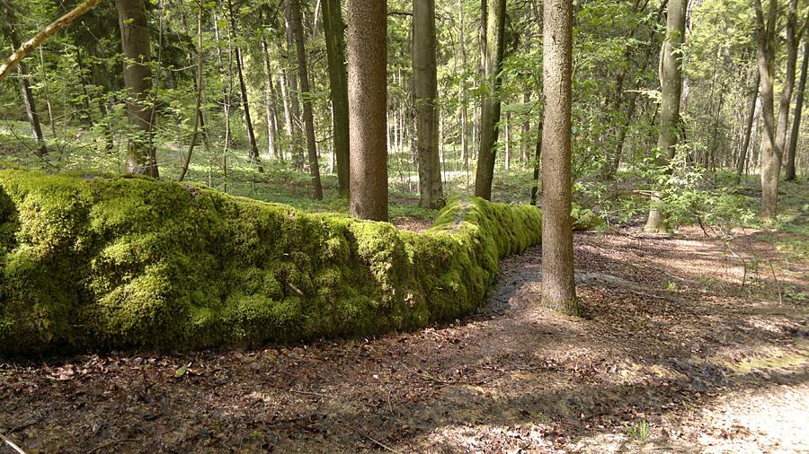 BilderrätselOberpfalz.jpg