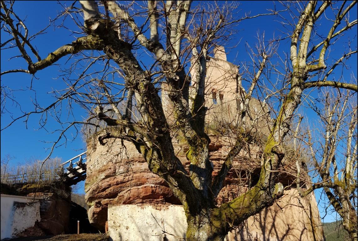 Burg Ramstein.jpg