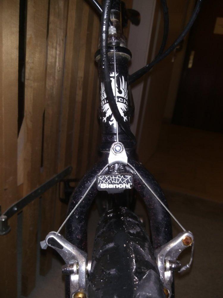 Detail Spider.