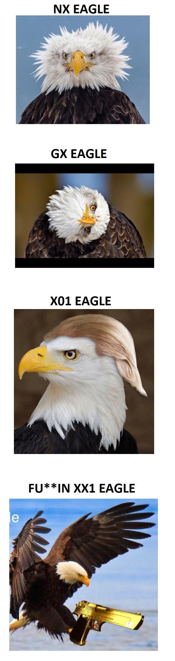 Eagle Meme.jpg