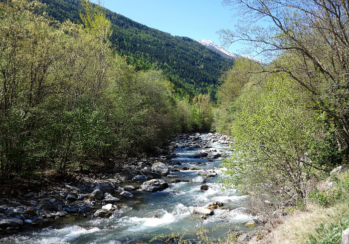 Fluss bn700.