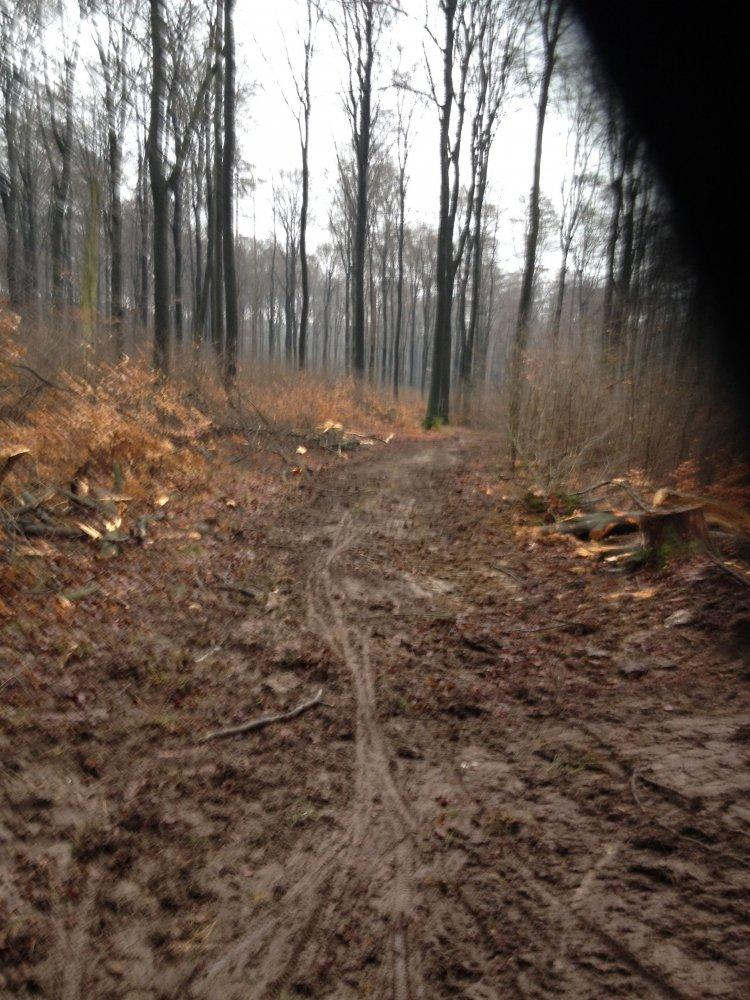 Forstarbeiten_20140115-2.