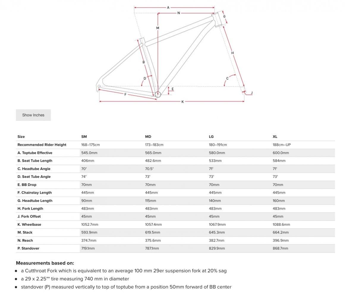 Geometrie Salsa Cutthroat.