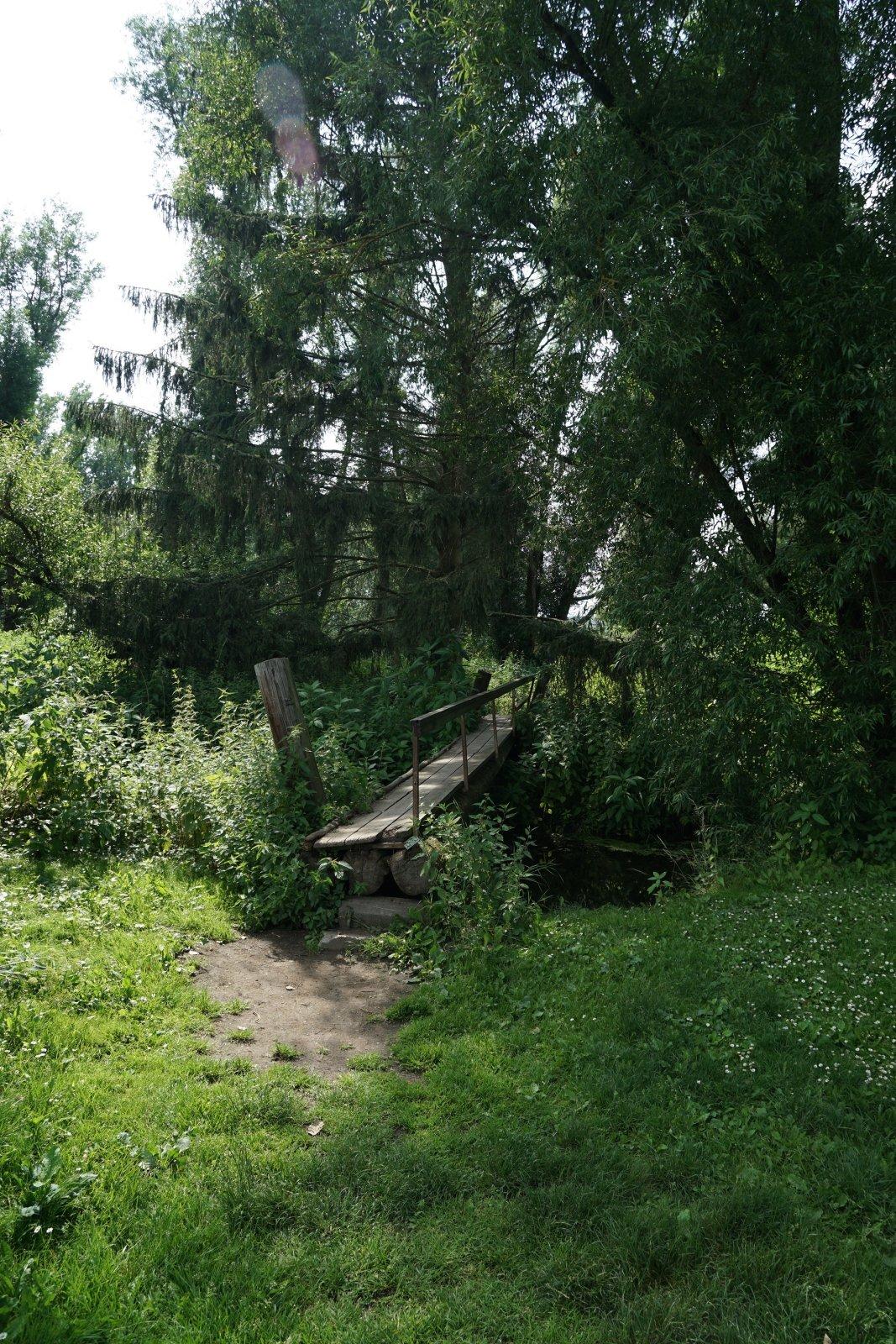 Holzbrücke über die Alte Ilse.JPG