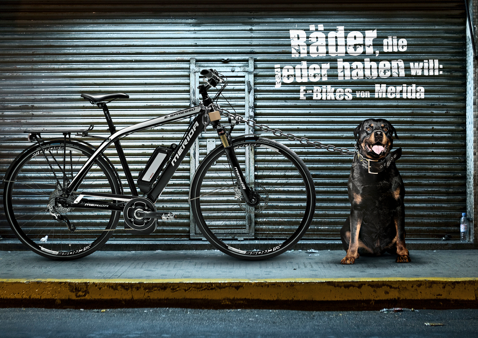 Hund Fahrrad 2.png