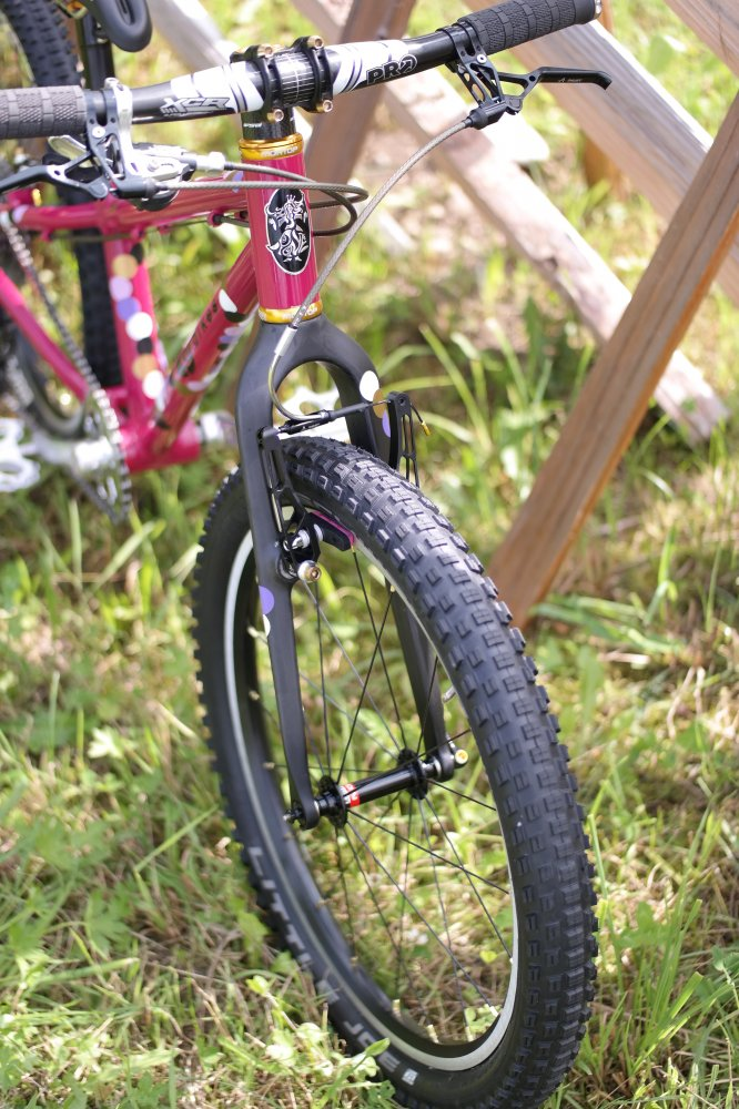 Zeigt her die Bikes eurer Kleinen... Galerie! | Seite 69 | MTB-News.de