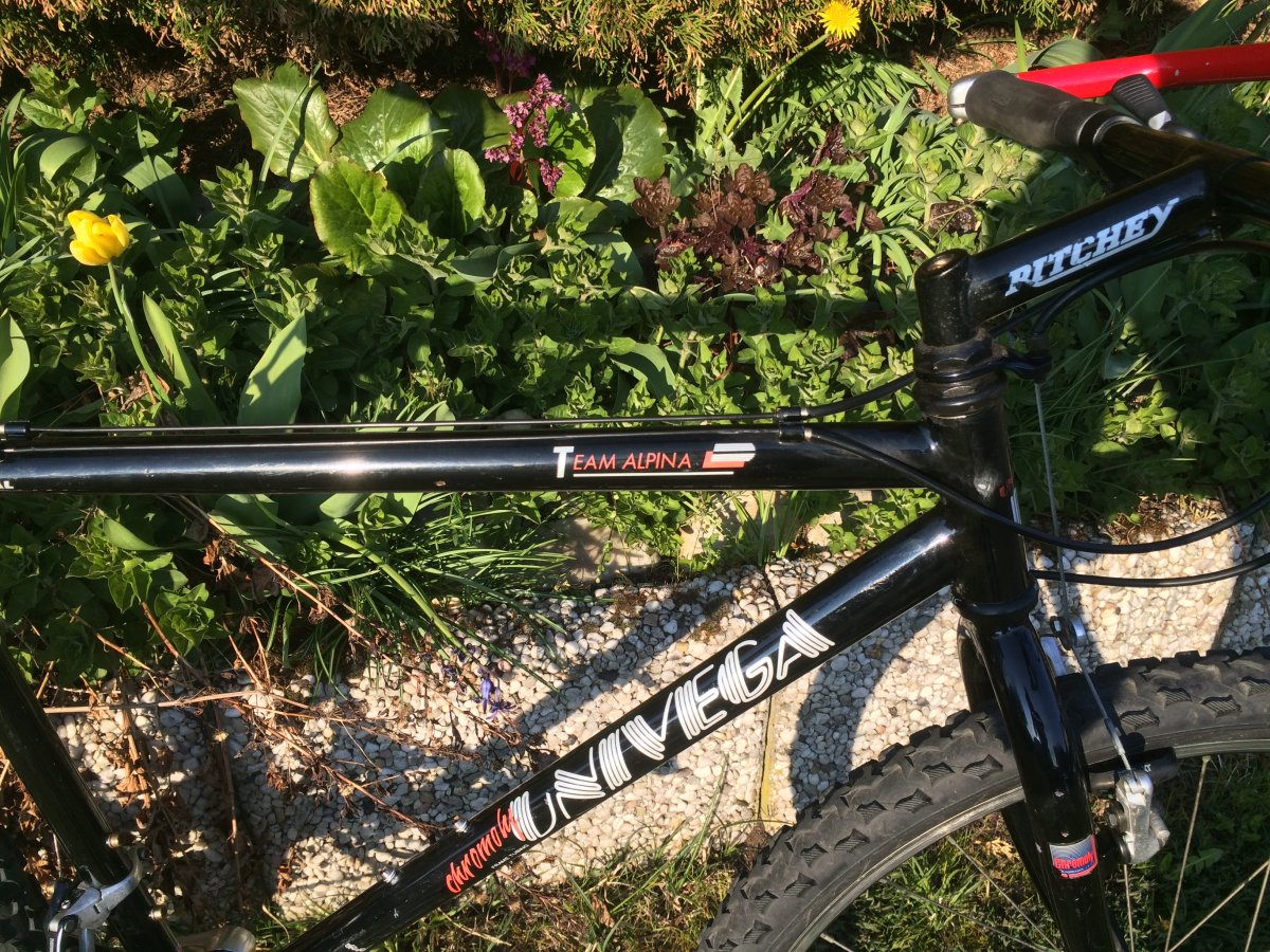 Univega Team Alpina fillet brazed? | MTB-News.de