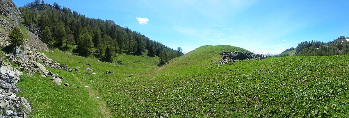 Montana_Pfarschong_2016_3.jpg