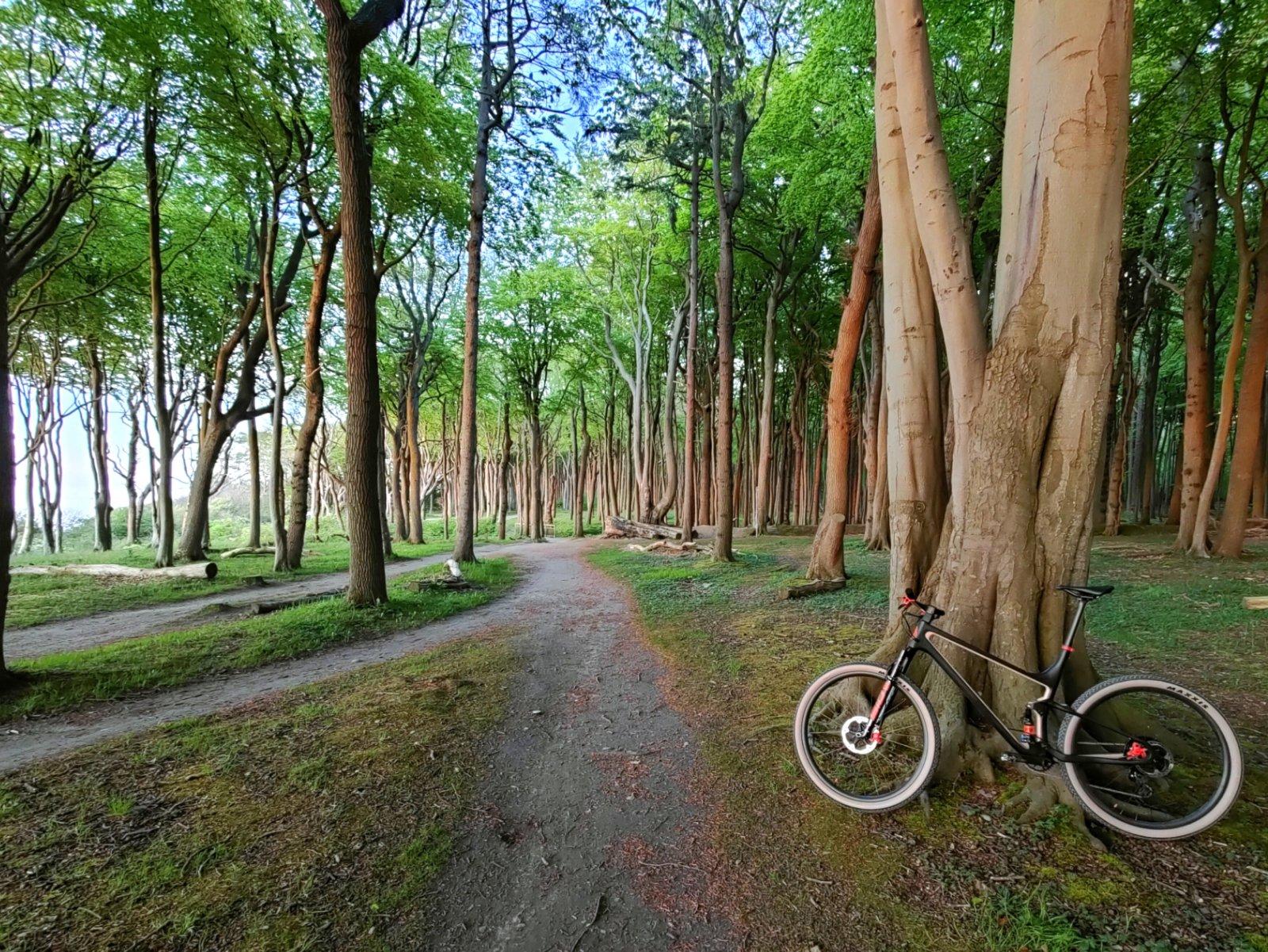 PicsArt_05-23-07.16.41.jpg