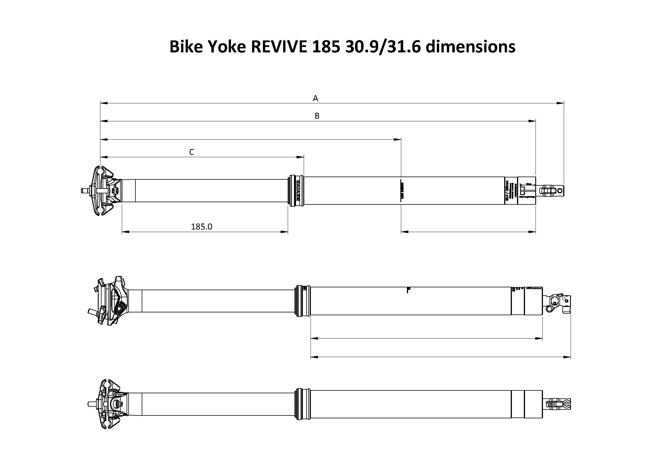 reVive-185.jpg