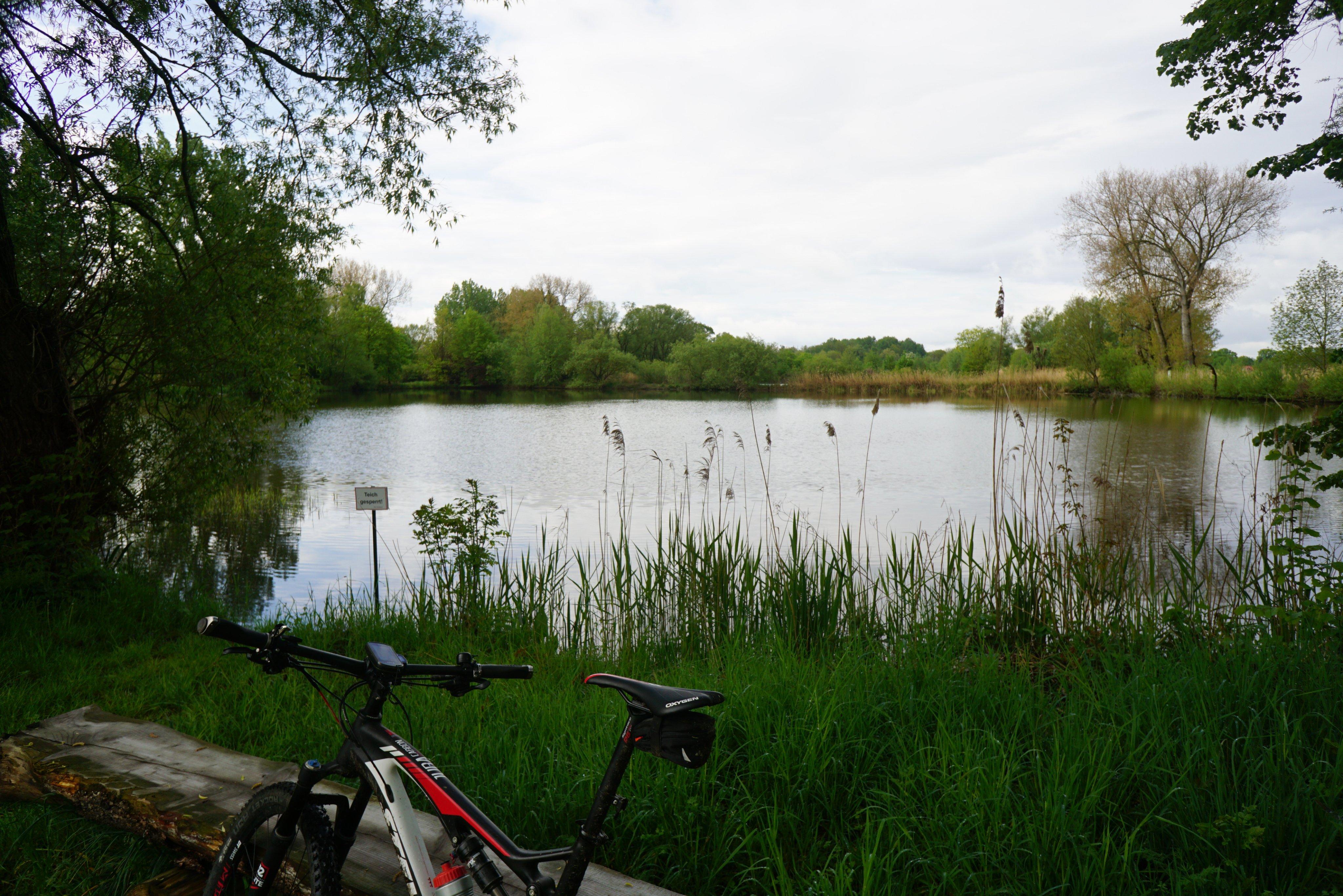 Seenlandschaft auf der Okerinsel bei Meinersen.JPG