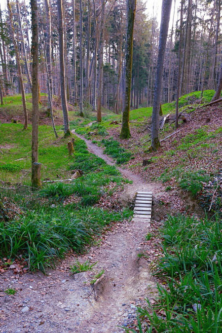 Trail b450.