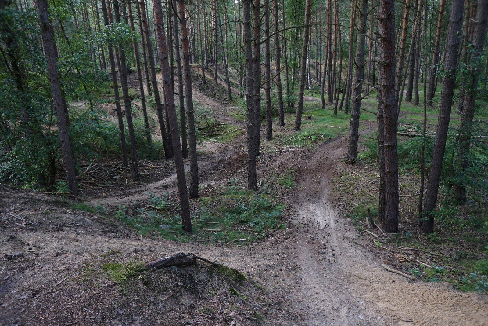Trailkuhlen bei Wilsche.JPG