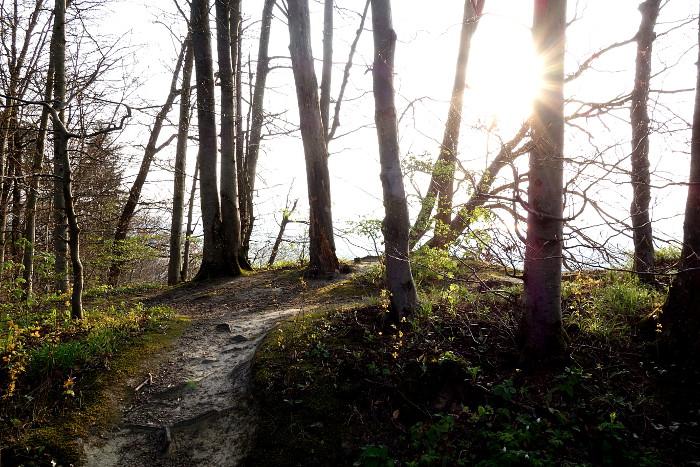 Trails Abendsonne b 700.