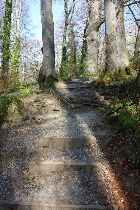 Trails b450.
