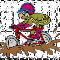 radon-biker-qlt