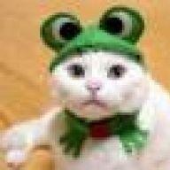 Froschkatze