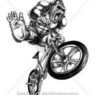 bikegorilla