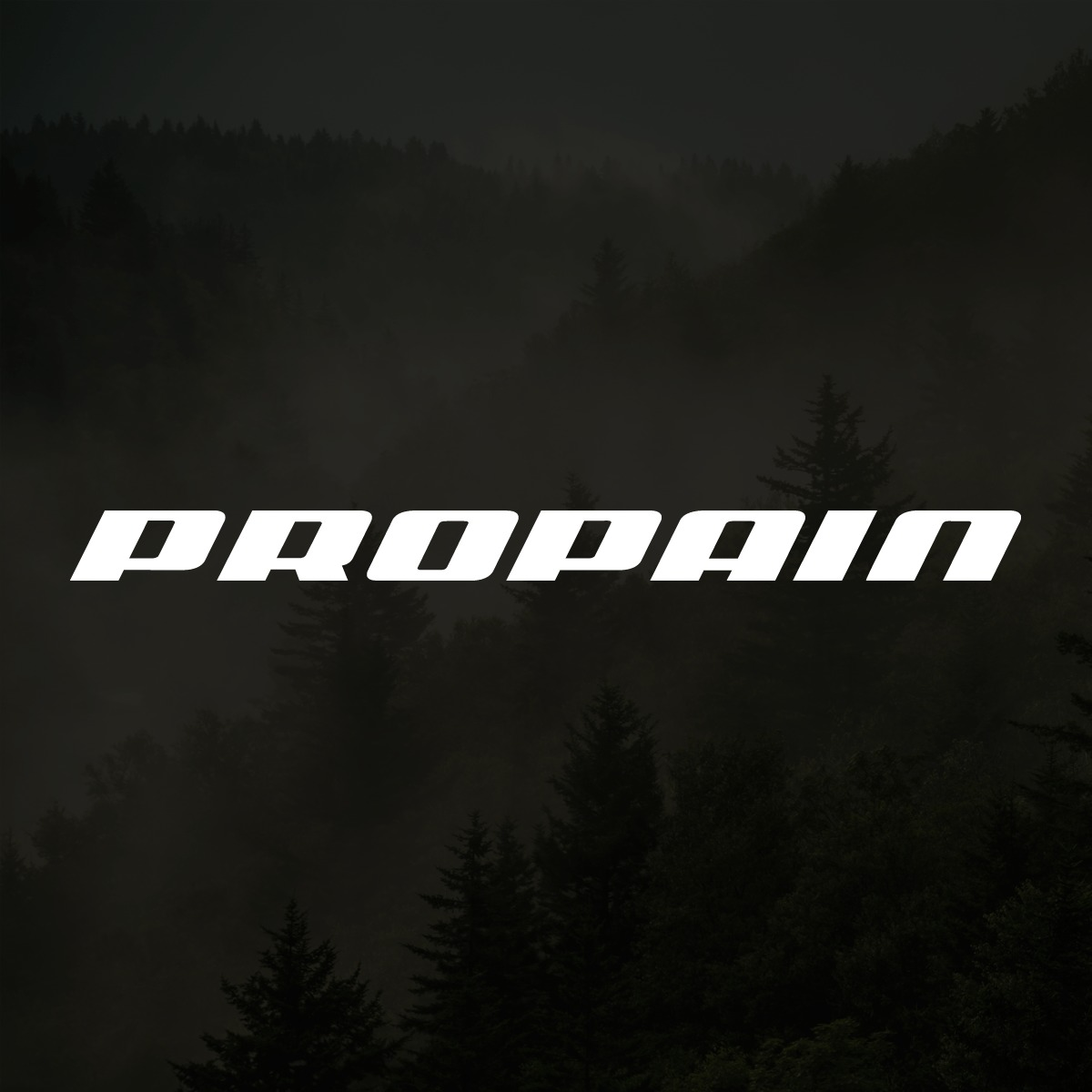 Propain Bicycles GmbH