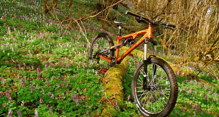 Das perfekte Bike