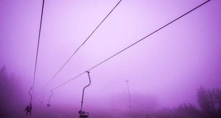 PurpleTaste_2012_Fruehlingserwachen_ms_0671