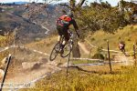 large_Foto_Jens_Staudt_9861_Seaotter_Downhill_morewood_united