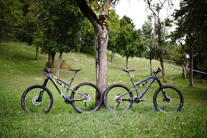 Komplett wirken beide Bikes recht stimmig, nur am Sitzrohr scheiden sich die Geister