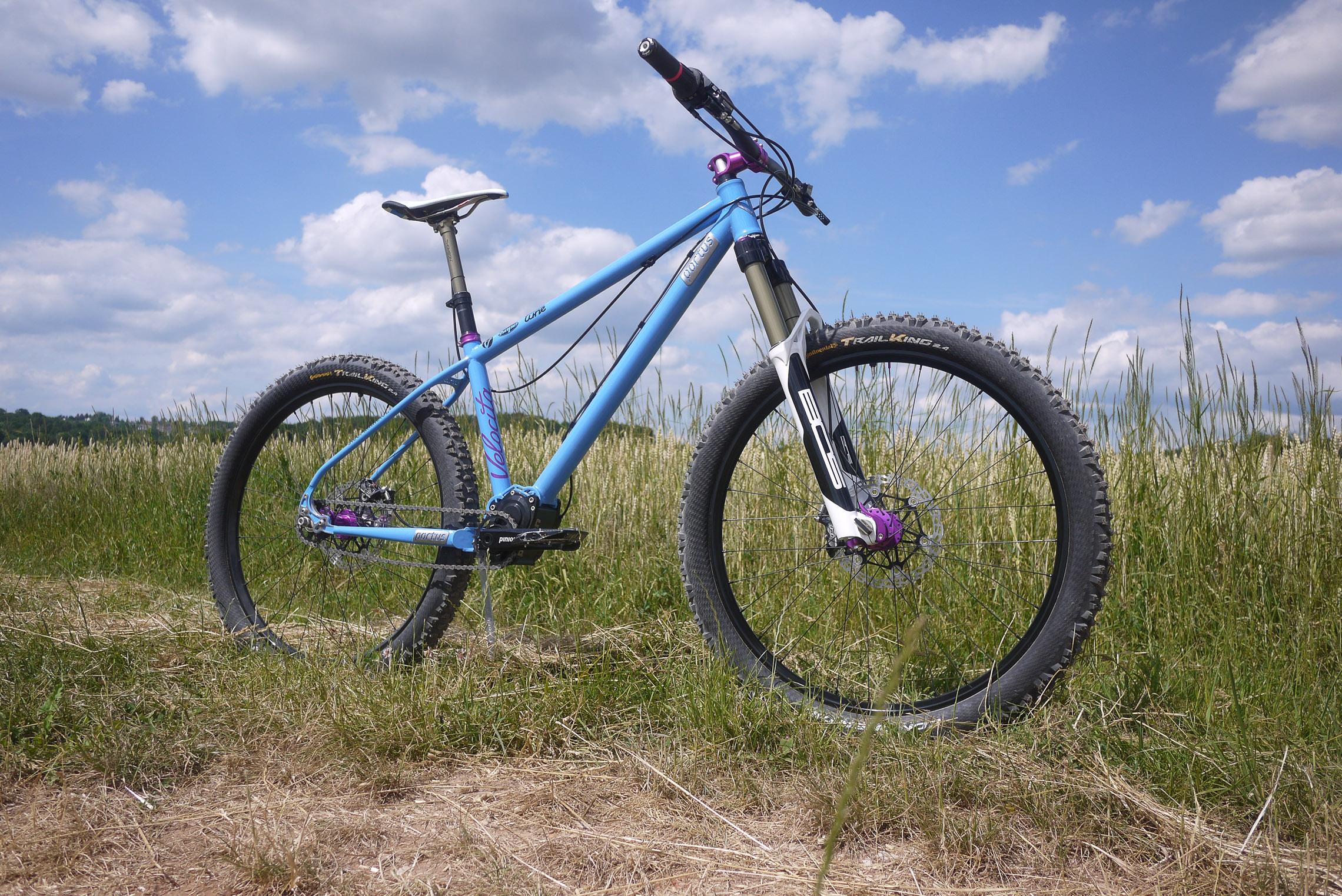Portus Cycles Pinduro: Enduro-Hardtail, Stahl, Pinion P1.18